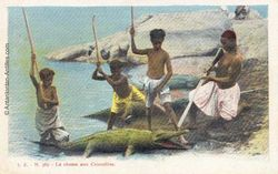 Guyane-la-chasse-aux-crocodiles