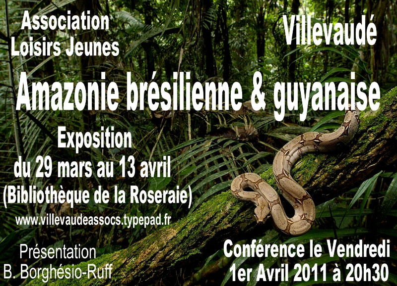 Affiche expo2011
