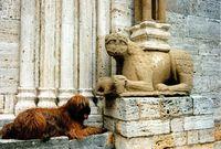 Briard_et_lion_stilophore