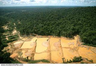 Orpaillage-Guyane