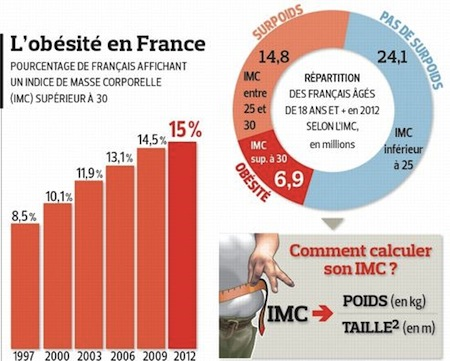 Obesite-france-infographie